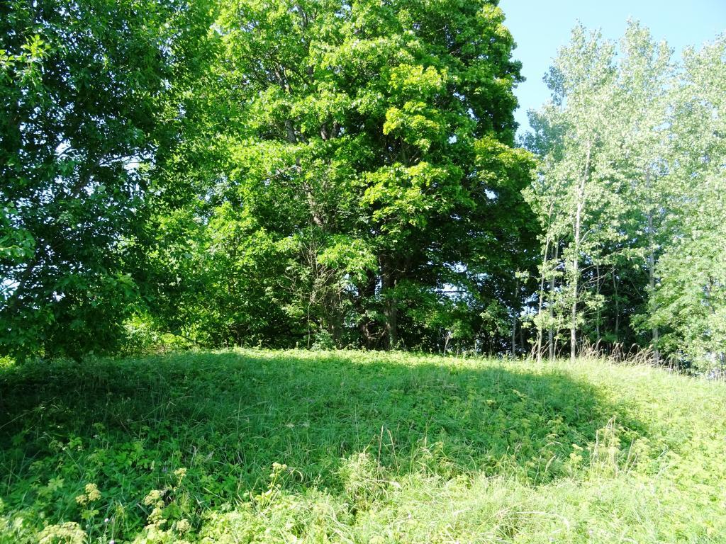 Skats no ZR uz Olnieku viduslaiku kapsētu. 2018.g. jūlijs. E.Žīgura foto.