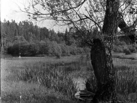 Košu vēris. 1960. gadu vidus. Modra Jāņa Viļņa foto.