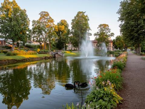 Maija parks 2020. gads. Foto no turisms.cesis.lv