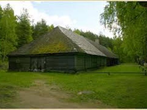 Priedes krogs Brīvdabas muzejā, Rīgā. Foto: tuornet.lv.