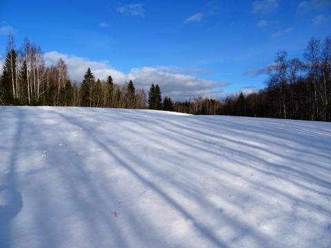 Poda kalns. Skats no R puses. 2017.gada 25.februāris. Edgara Žīgura foto