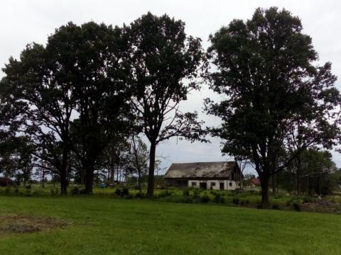 Bijusī Munduru ģim. mājvieta skatā no dienvidiem, no bijušās Caru ģim. mājvietas. Foto: F.Bobinskis (29.07.2019)