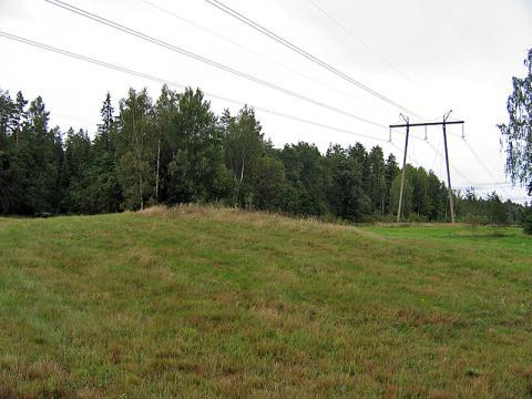 Straupnieku Mēra kapi. Kocēnu pagasts. 2007.g. 7.septembris. V.Grīviņa foto.